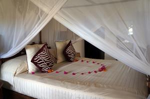 蚊帳付きベッド