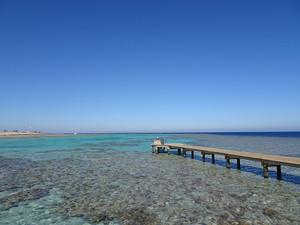 きれいなサンゴ礁
