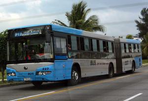 P12系統のバス