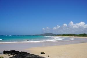 イサベラ島のきれいなビーチ