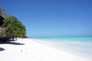 サンドバンクに渡る手前の浜辺